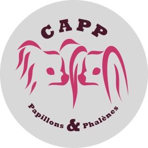 Logos-CAPP-Autocollant